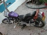 purplez400