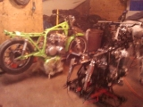 kawi green_3